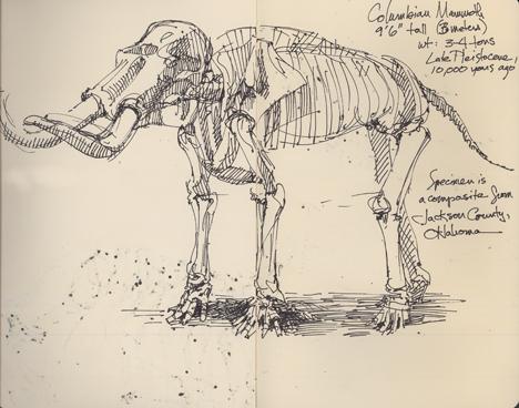 columbianmammoth.jpg