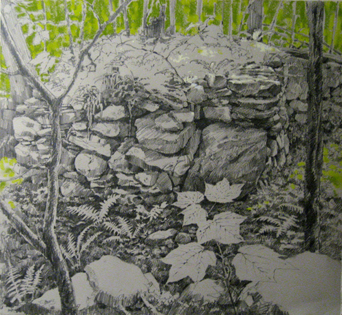 Doyle\'s Old Homestead, what\'s left of it, Harvard Forest. Plein air drawing (unfinished), 22\