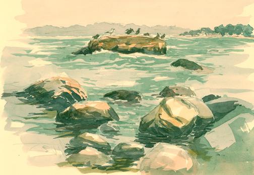 Cormorants, Hamanasset Part, CT. Watercolor.