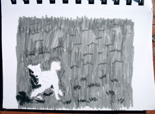 Run, Cezanne, run3511; click for larger version