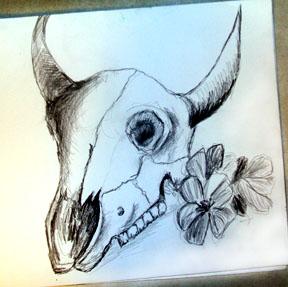 bullskull.jpg