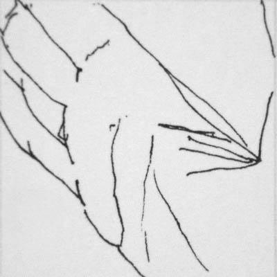 hand20.jpg