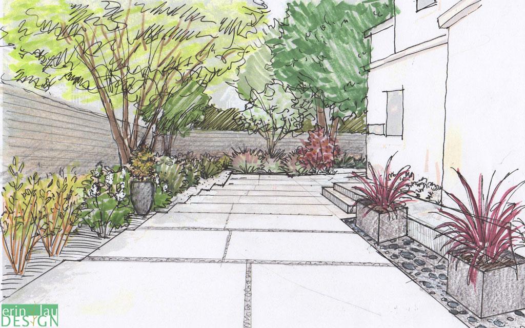 Sketches Front Landscape Yard