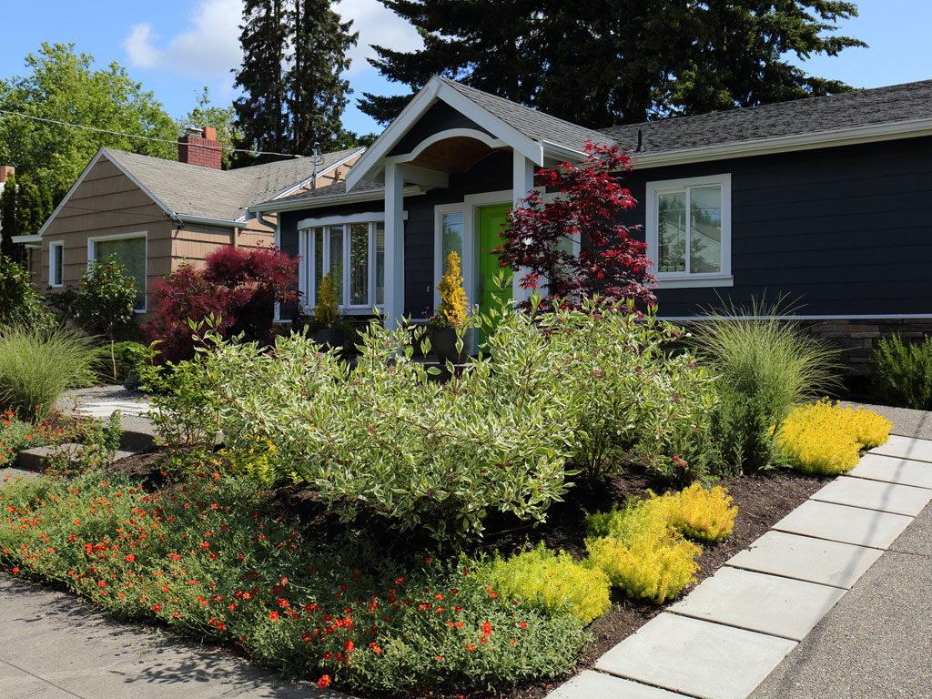 Garden Creation: No-Lawn Front Yard | DrawnToGarden on Backyard Ideas No Grass  id=45953