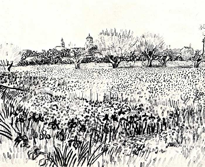 Vincent van Gogh, Field With Flowers, 1888