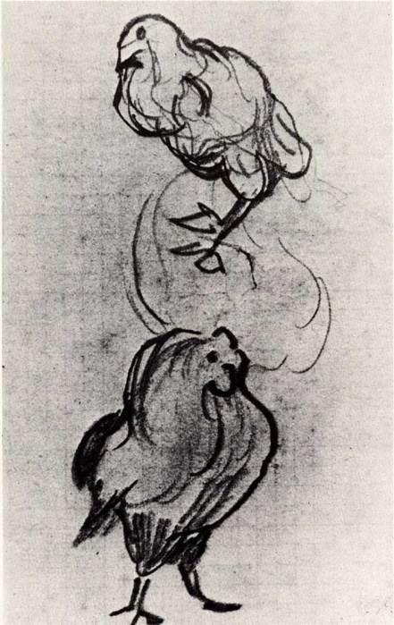 Vincent van Gogh, Sketches Of A Hen And A Cock, 1890