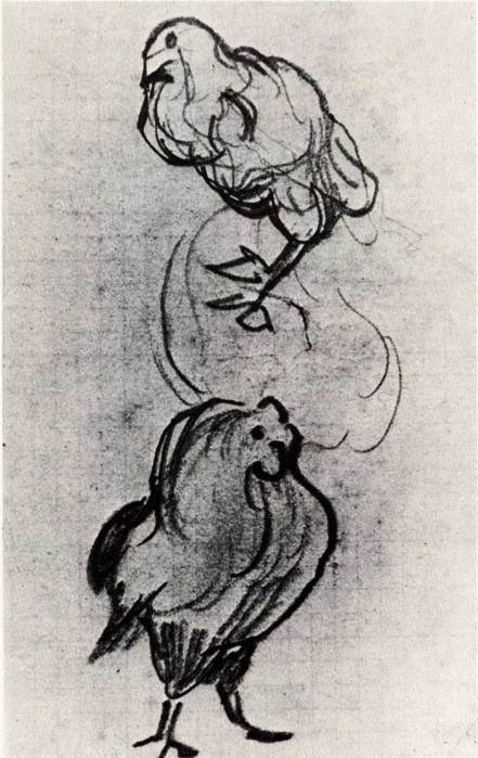 Vincent van Gogh, Sketches Of A Hen And A Cock, 1890