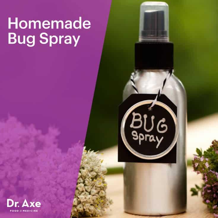Homemade Bug Spray - Dr.Axe