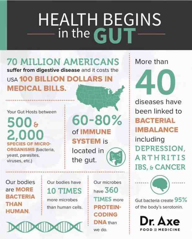 Health Begins in the Gut Infographic
