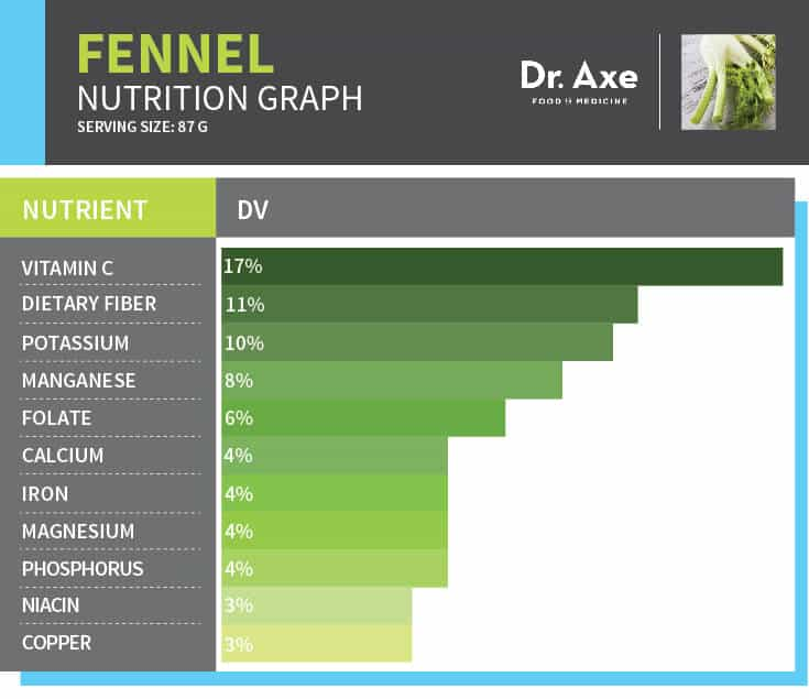 Fennel Graph