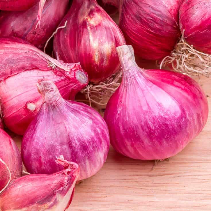 Shallots Anti Inflammatory Antioxidant Amp Anti Allergen