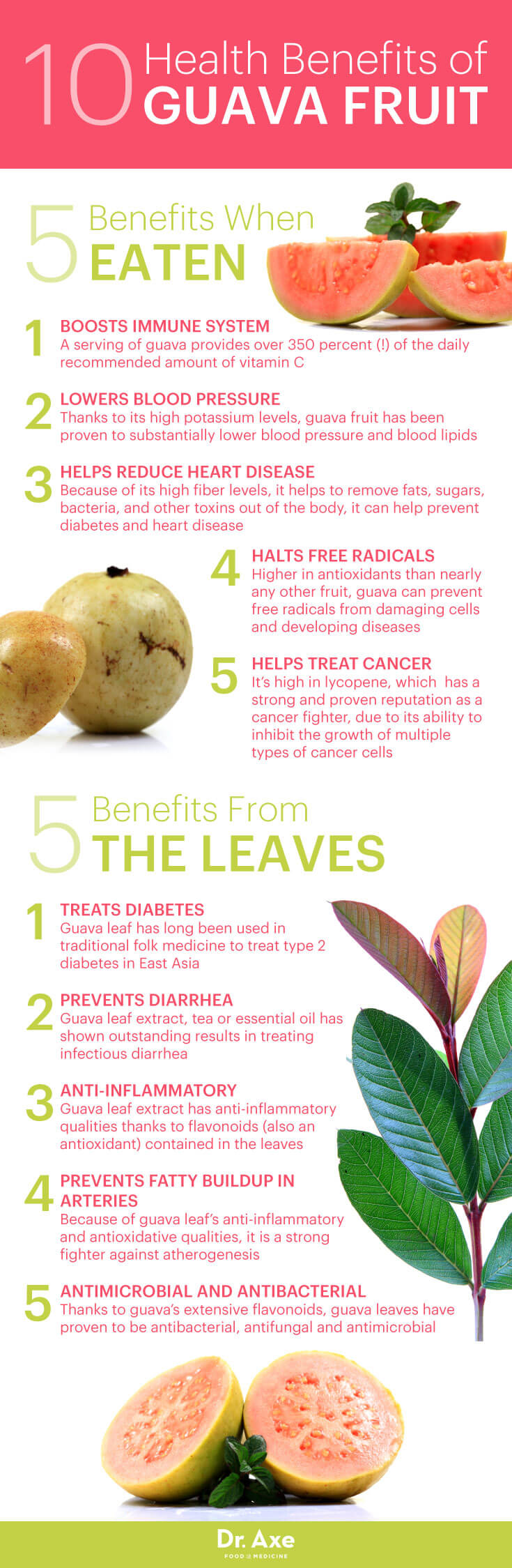 Guava benefits - Dr. Axe