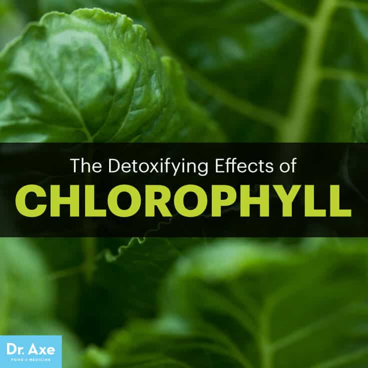 Chlorophyll Benefits The Top Detoxifying Plant Pigment