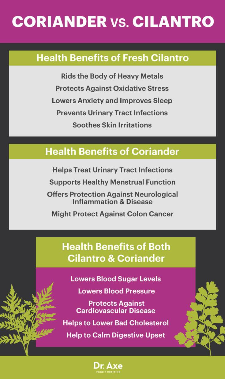 Coriander vs. cilantro - Dr. Axe