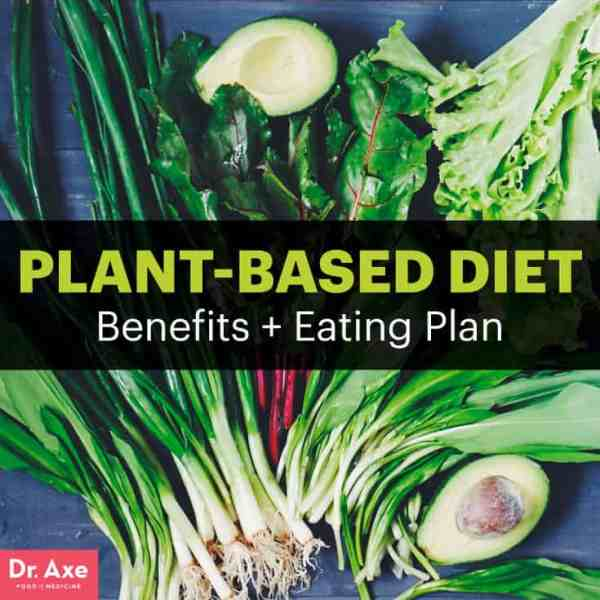 Plant-based diet - Dr. Axe