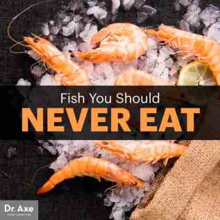 Fish you should never eat - Dr. Axe