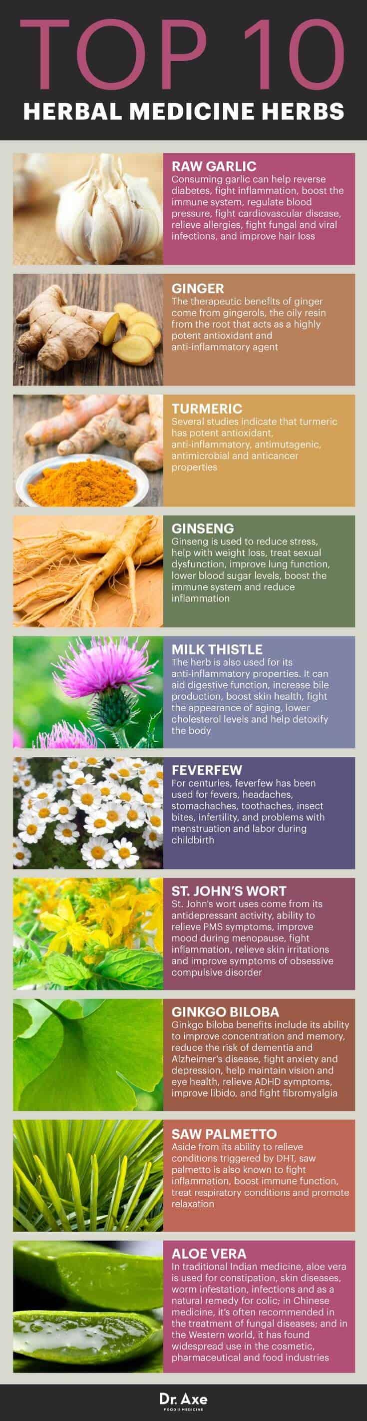 Top 10 medicinal herbs - Dr. Axe