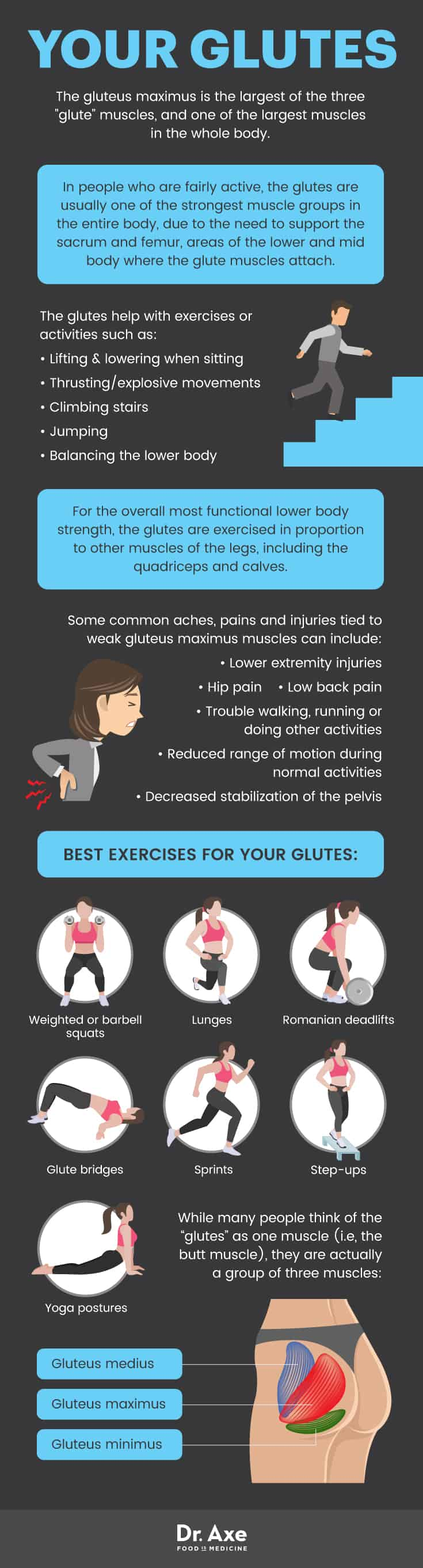 Glutes guide - Dr. Axe