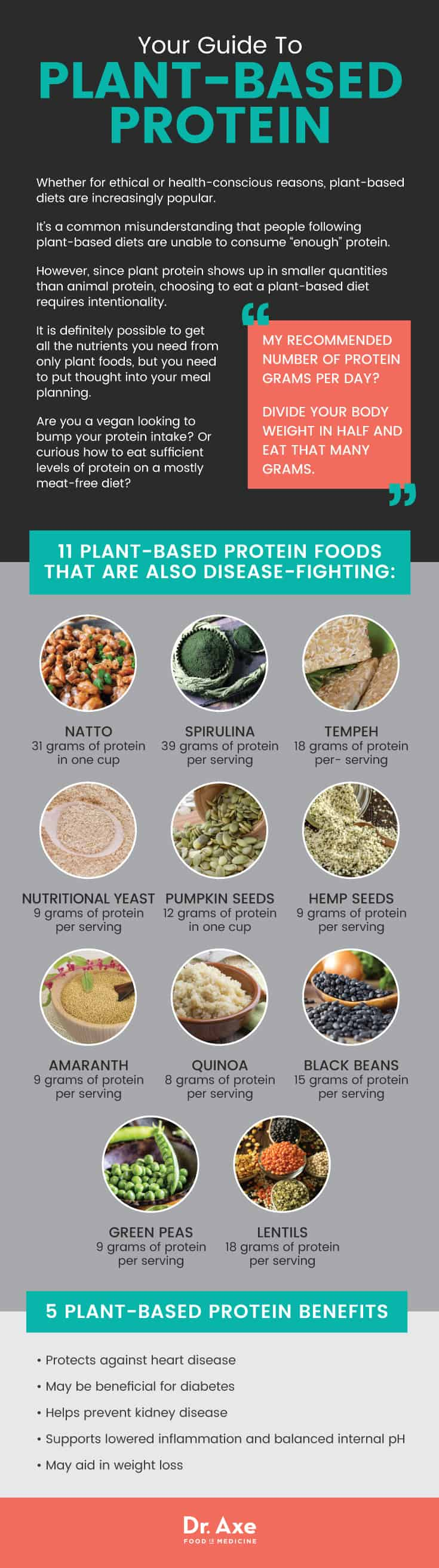 Plant-based protein guide - Dr. Axe
