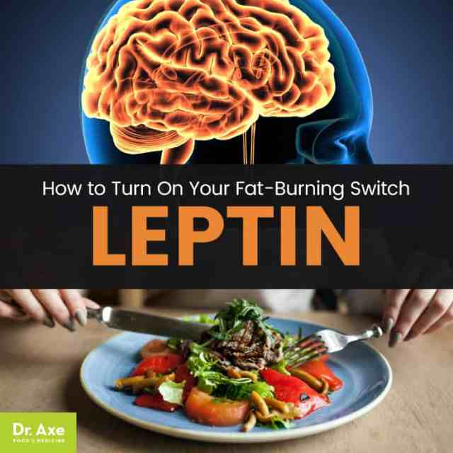 Leptin - Dr. Axe