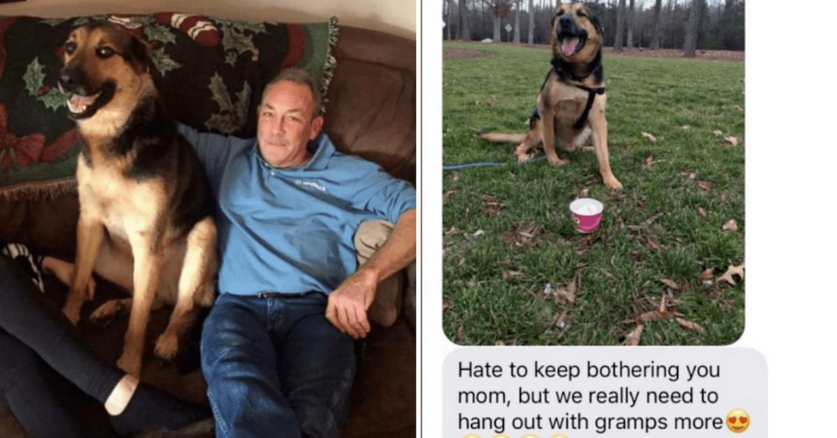 Animal Rescue Virginia Sites