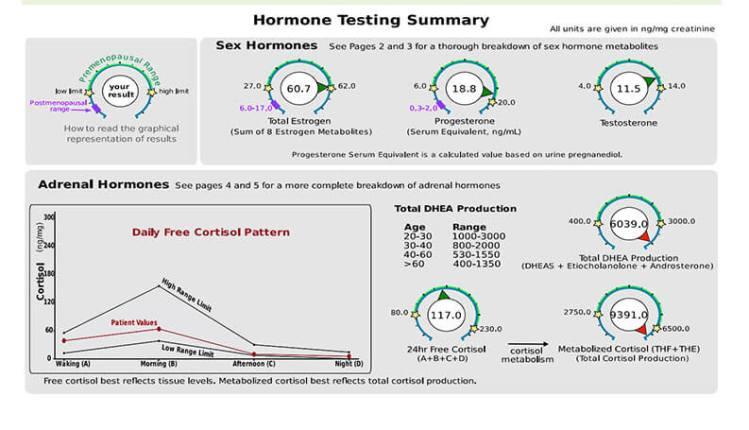 Hormone Testing Summary