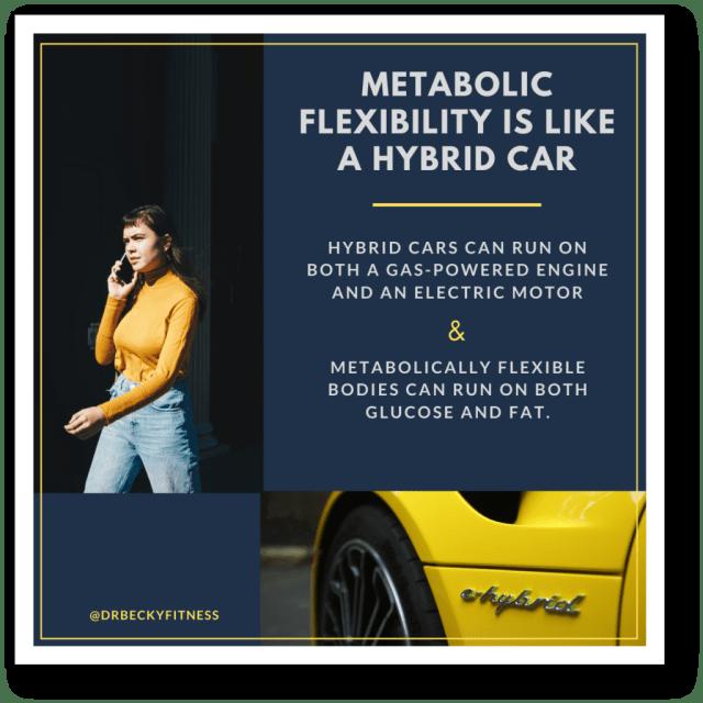 Metabolic flexibility is like a hybrid car