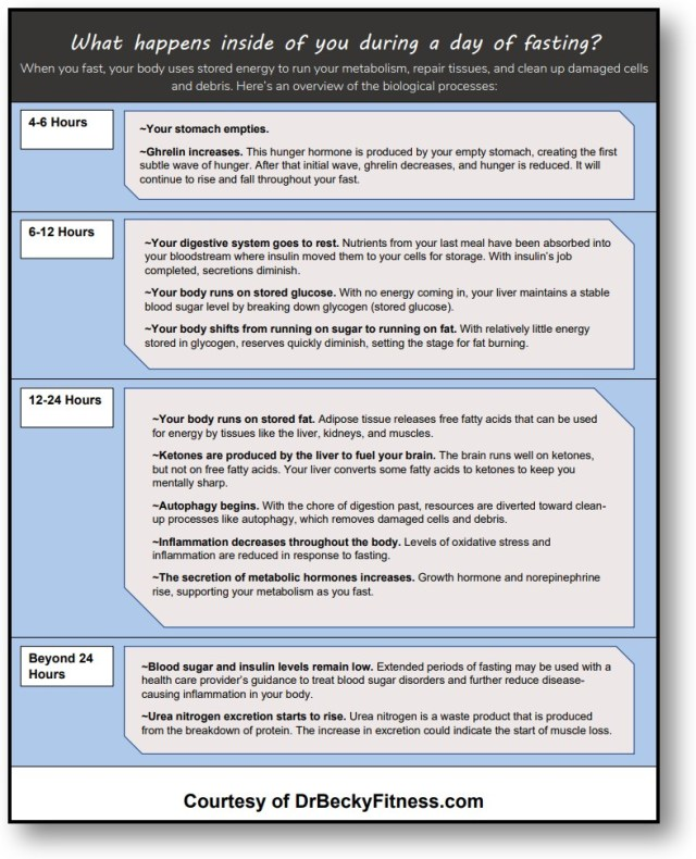 Fasting Effects Timeline Download