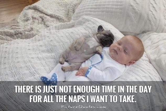 there-is-just-not-enough-time-in-the-day-for-all-the-naps-i-want-to-take-quote-1