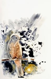 a lovely muted watercolour painting of a bird resting on a branch