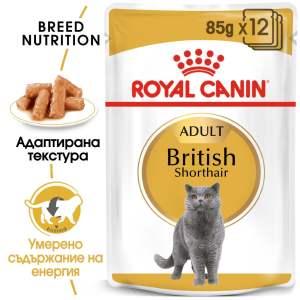 ROYAL CANIN British Shorthair Adult...