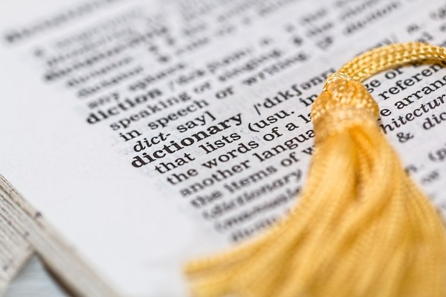 "Image of a page in the dictionary, focused on the word ""dictionary"""