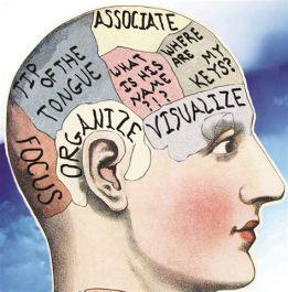 Transform your memory