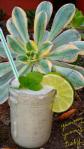 Nice-cream, Cilantro, Lime, Detox Margarita