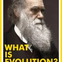 What is Evolution