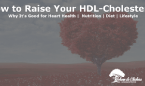 cover page for blog post about how to raise HDL cholesterol for heart health
