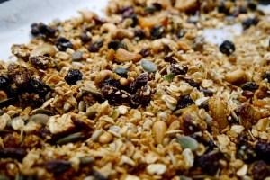 Gluten and Sugar Free Granola