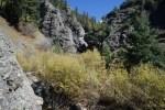 Constriction in Quartz Creek