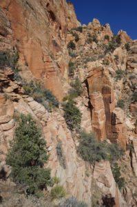 Kinesava semi-exposed traverse