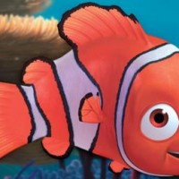 Bass vs Nemo