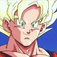 Goku vs Sengoku