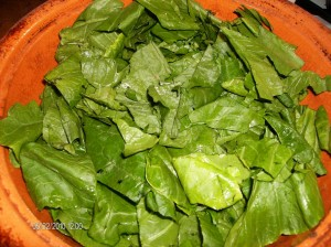 swiss chard in clay pot