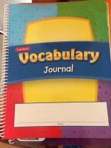 Lakeshore problem solving journal