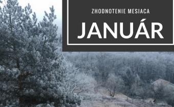 Zhodnotenie mesiaca – Január 2017