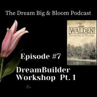 #7 DreamBuilder Workshop Pt.1
