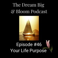 #46 Your Life Purpose
