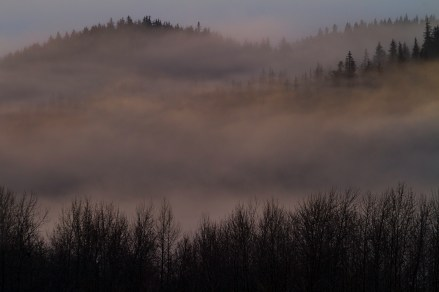 Misty Fog Lays Over The Land At First Light