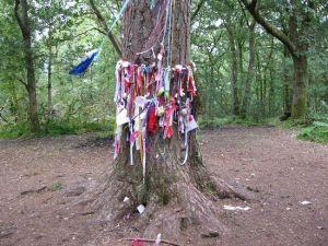 Aberfoyle Faerie Tree