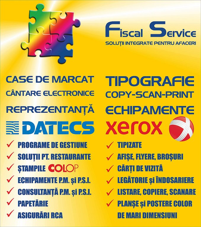 Geam lateral Fiscal Service - concept