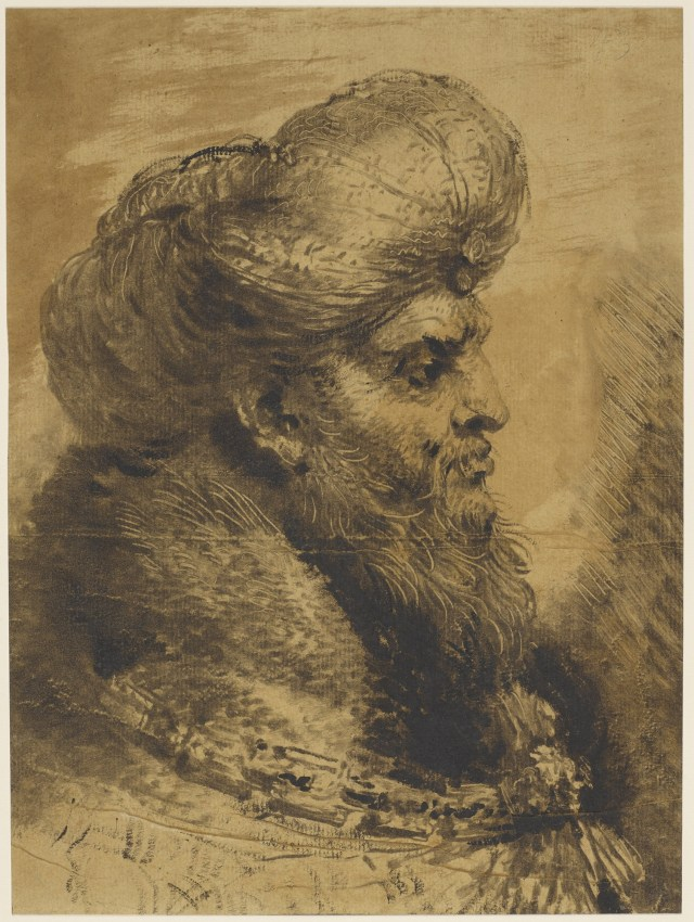 Casiglione - head of an Oriental